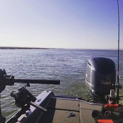Walleye Reports