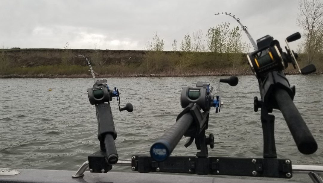 Trolling Reels – Best Fishing Reels for Trolling