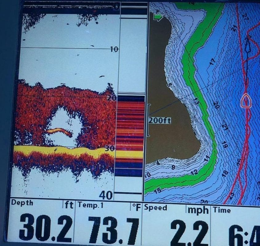 Bandit Lures Walleye Deep Model - An Honest Review