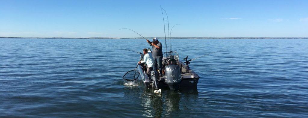 Fishing Jigging Raps