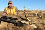 Mule Deer Hunting in Montana