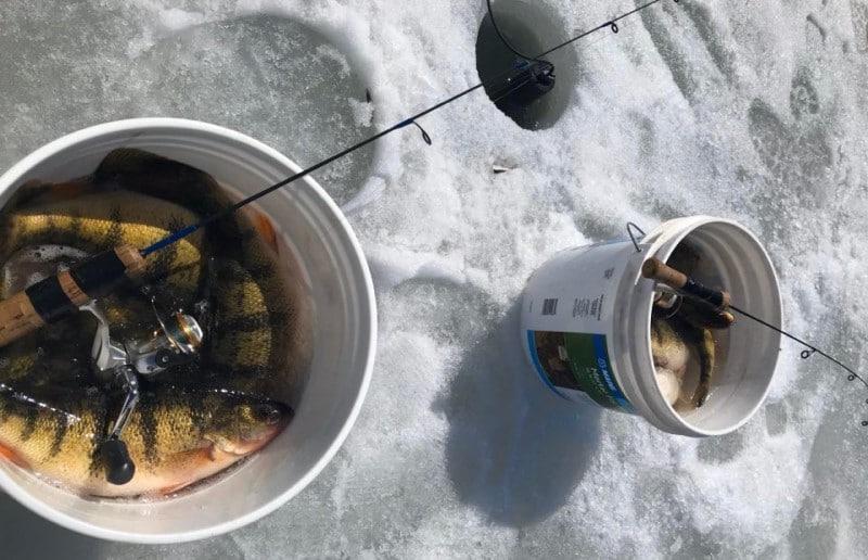 Deadsticks for Ice Fishing